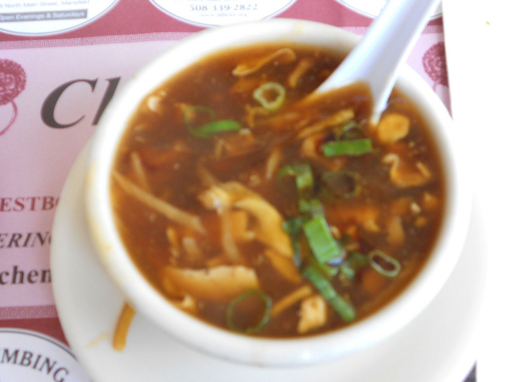 Hot and Sour Soup (by Mr. Ducke)