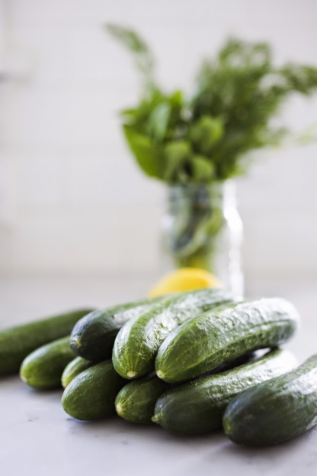 Persian Cucumbers @ Feasting At Home